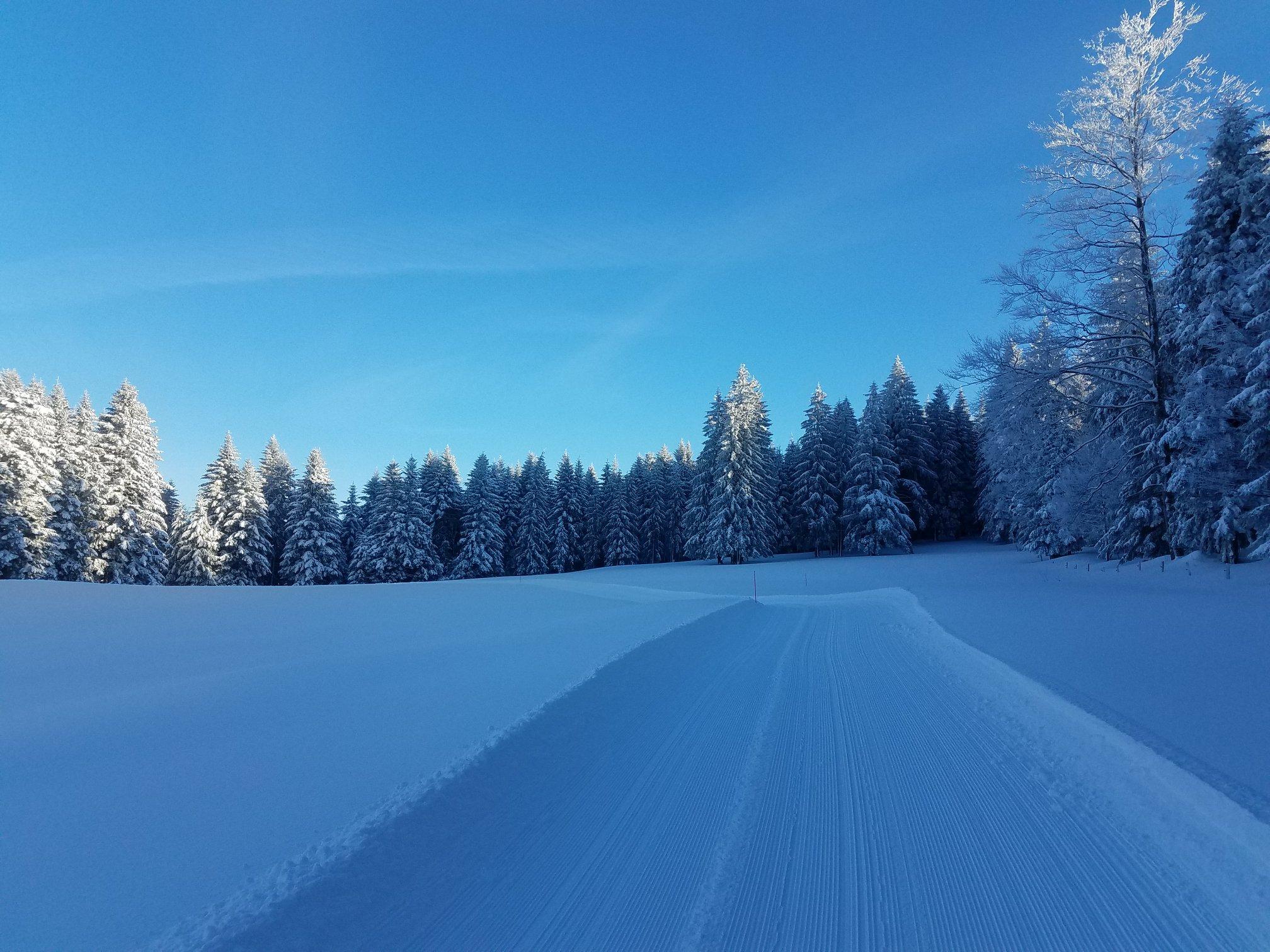 Entre bleu et blanc