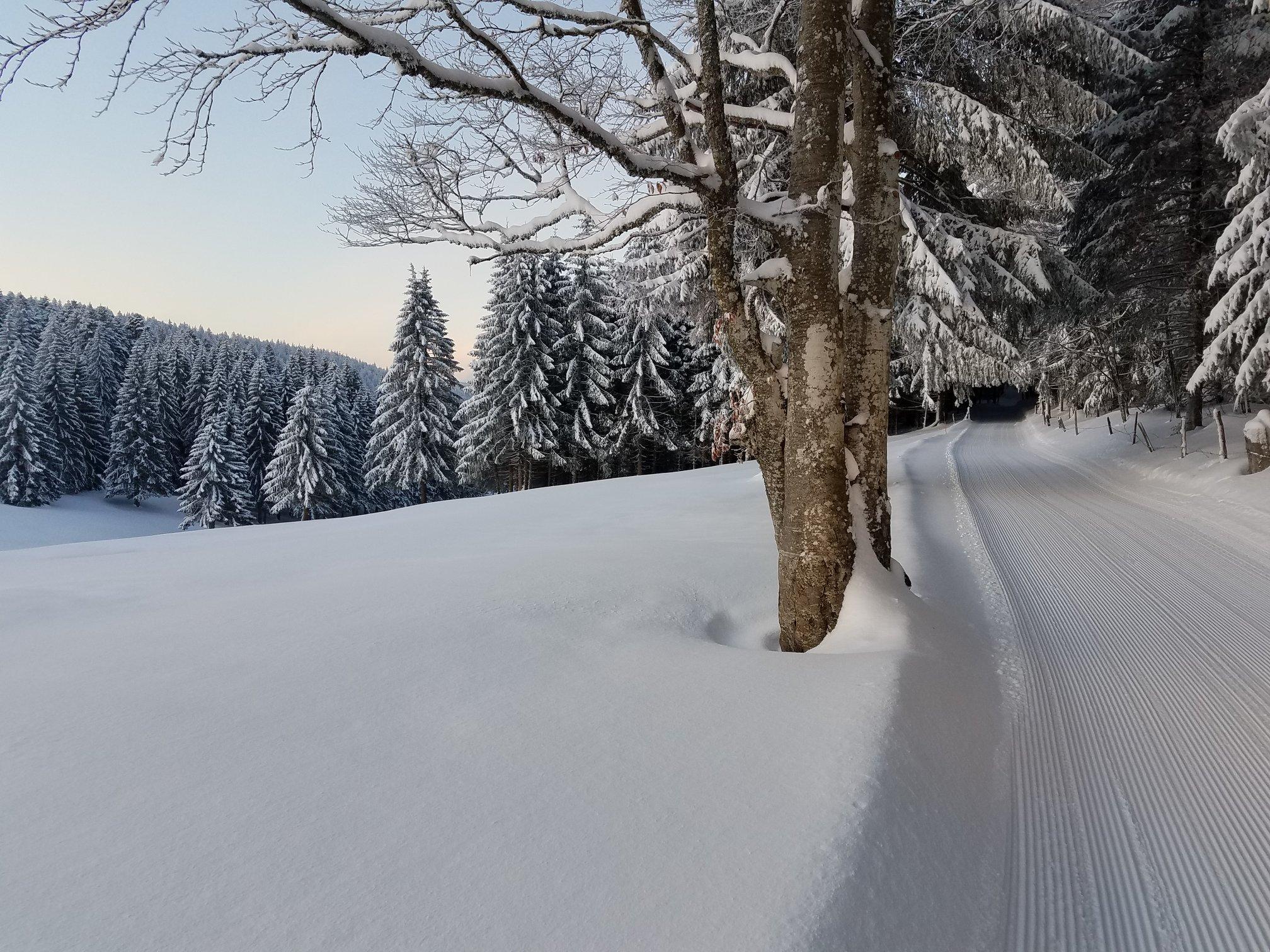 Côté suisse